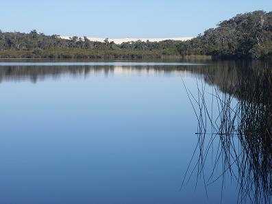 Lake-Yeagarup-dunes